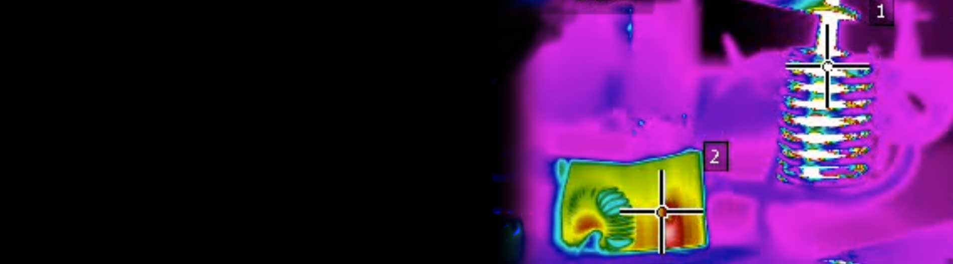 FLIR Thermal Image