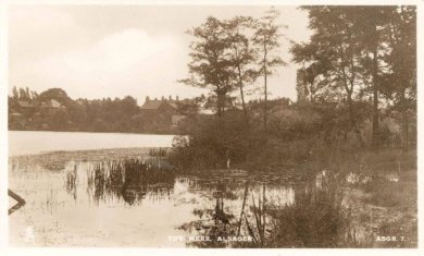View of Alsager Mere looking towards the houses on Crewe Road