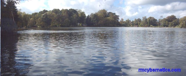 Panoramic Alsager Mere
